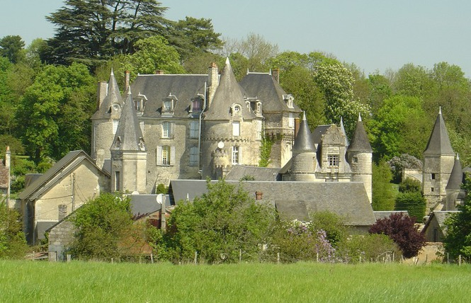 chateau-celle-guenand